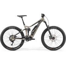 MERIDA 2019 eONE-SIXTY 800 XL(51) SELYEM TITÁN / FEKETE
